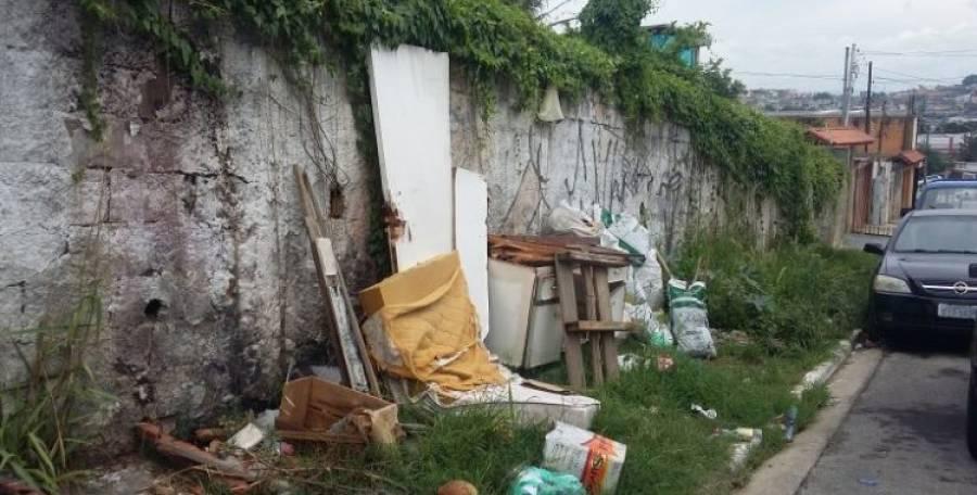 Pragas urbanas tiram a tranquilidade de moradores da zona leste de SP